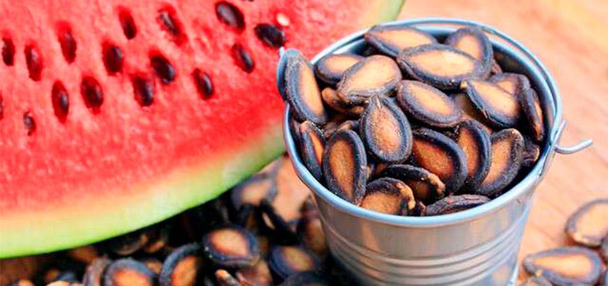 <i>Watermelon Seeds</i>